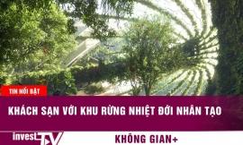 Khách sạn với khu rừng nhiệt đới nhân tạo